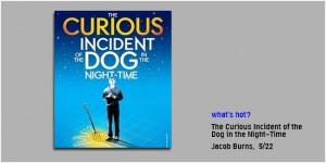 052214_Curious-Incident