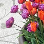 Untermeyer tulips 2