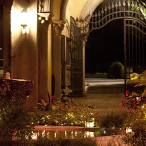 A Summer Evening at the Rosens'