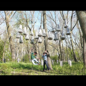 "Image Credit: Joyce Hwang (Fellow in Architecture/Environmental Structures/Design '13), ""Bat Tower"", 2010."