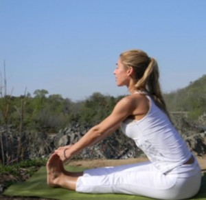 gentle yoga- ishta
