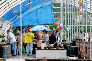 plantsalegreenhouse
