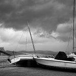 image-11_tarrytown-marina-carnage_jaime-martorano